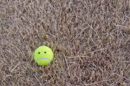 sadly: sadly tennis ball on the lawn dry.