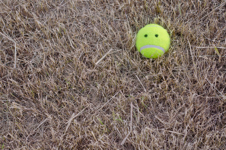 sadly: sadly tennis ball on the lawn dry.