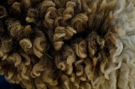 grey rug: sheepskin texturel background