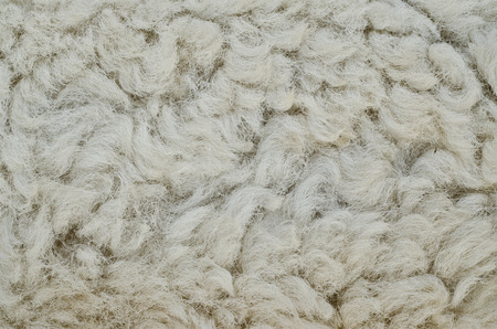 manufactured: The manufactured skin of a sheep.Wool sheep closeup for background.
