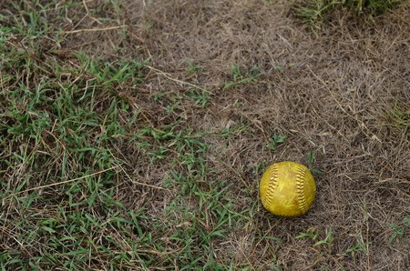 whack: old softball in field Stock Photo