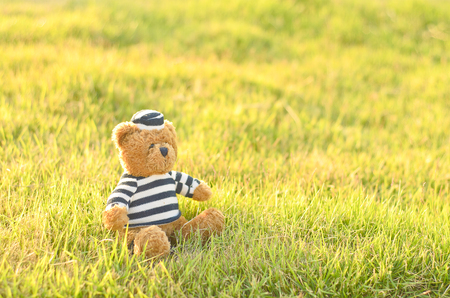 space to write: Teddy Bear On the grass background.have Space Write word.