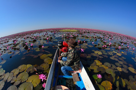 TALY BUA DAEANG driver Thai Taxi Boat,in RED LOTUS SEA ,The sea of red and pink water lilies lake at Nong Harn, Kumphawapi, Udon Thani, Thailand,