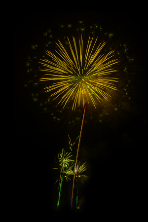Abstract colored firework background,Fireworks light up the sky