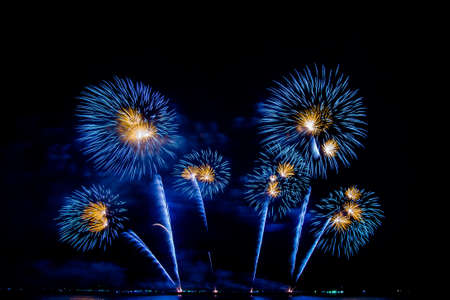 colorful fireworks,Beautiful multi color fireworks explosions lighting sky over trees silhouette and over an illuminated,celebration concept