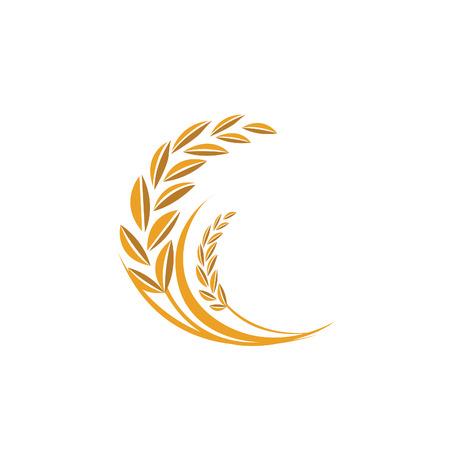 rice grain: rice vector Illustration