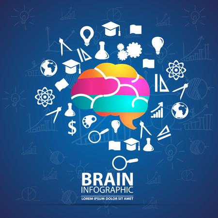 knowledge concept: infographics vector brain design