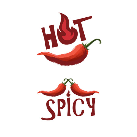 hot pepper: Spicy vector