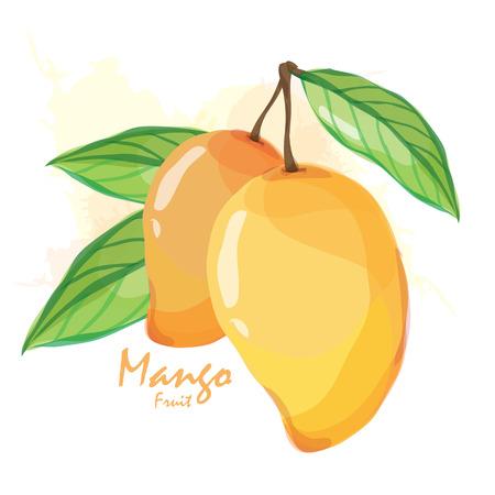 mango juice: mango fruit Illustration