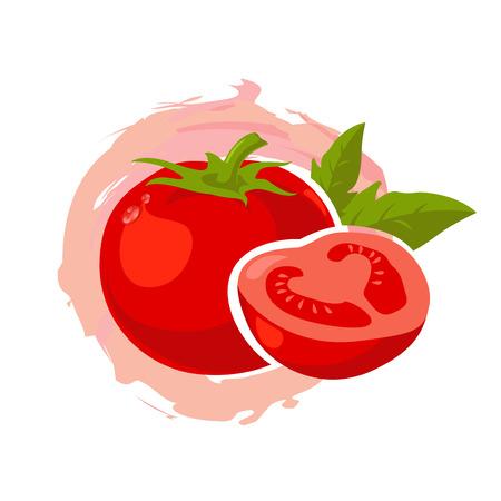 tomato: tomato vector