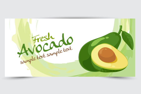 avocado vector illustration Stok Fotoğraf - 45064640