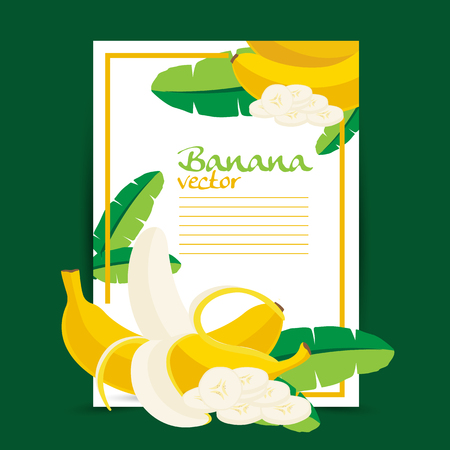 banana illustration: Banana illustration