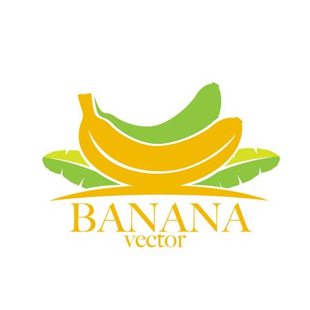 platano maduro: Ilustración del plátano