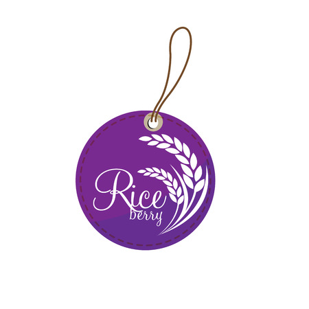 rice plant: Rice berry Vector