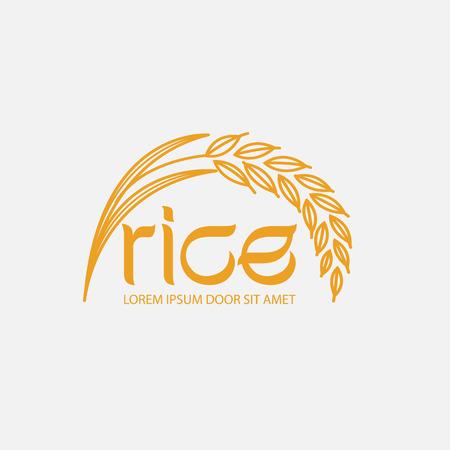 Rice: rice vector Illustration
