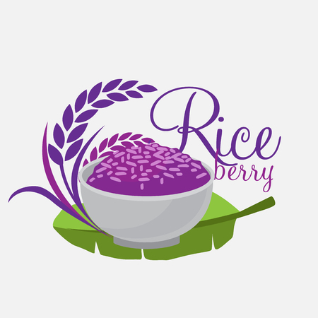 rice fields: Rice berry Vector