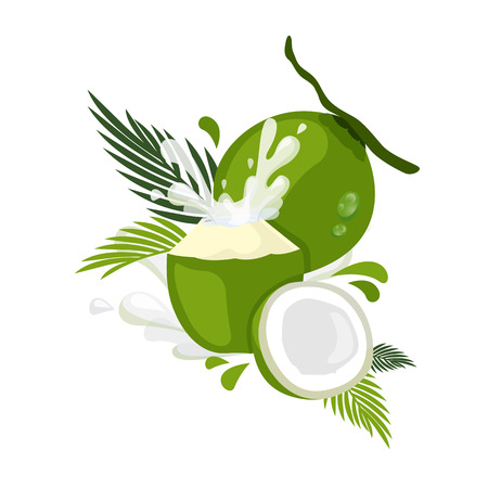 coconut water: coconut