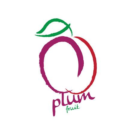 plum Illustration