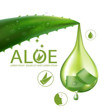 aloe vera background: Aloe Vera collagen Serum and Background Concept Skin Care Cosmetic.