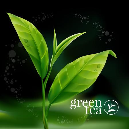 Green tea leaf