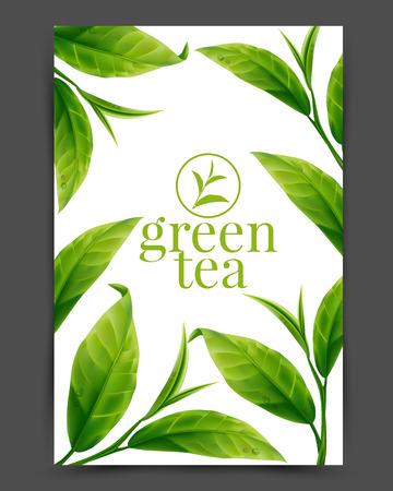 Zielona herbata liÅ›ci Ilustracja