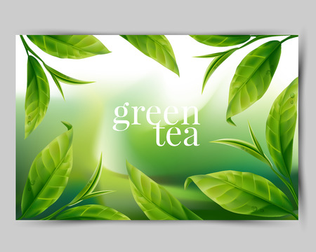 rich flavor: Green tea leaf