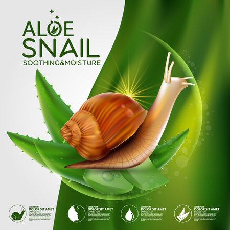 Snail Serum Cosmetic for Skin.