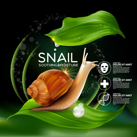 young leaves: Snail Serum Cosmetic for Skin. Illustration