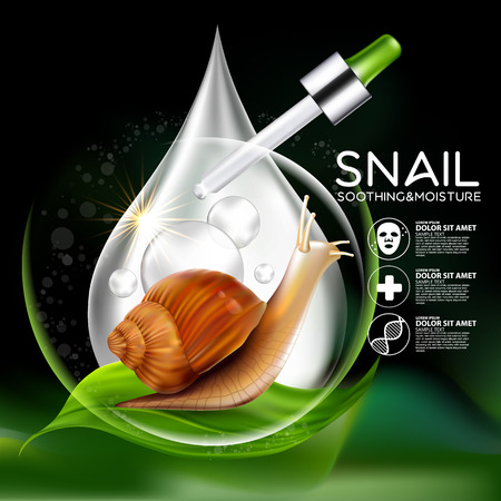 Snail Serum Cosmetic for Skin. Çizim