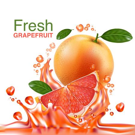 jugo de frutas: Vector de toronja fresca Vectores