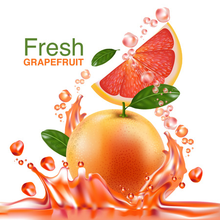 fruit juice: fresh grapefruit vector Illustration