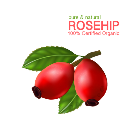 Rose hip oil natural cosmetic skin care Illustration