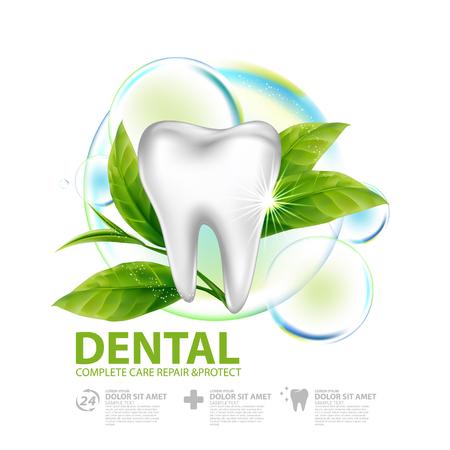 Dental care with green tea leaf concept