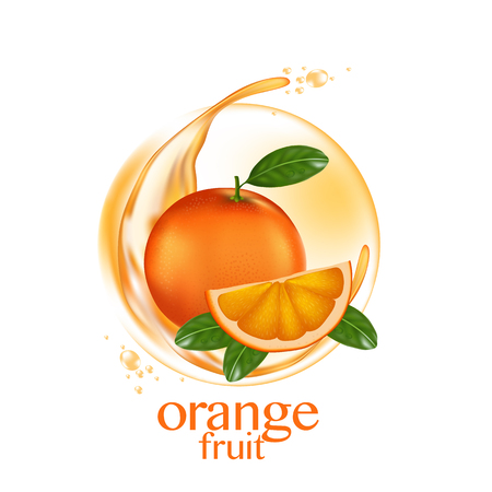 A fresh orange vector on a plain background. Çizim
