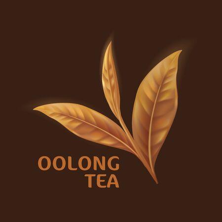 Oolong Tea Drink Packaging Mockup. Realistic green tea leaves background for advertising poster. Vector illustration Vetores