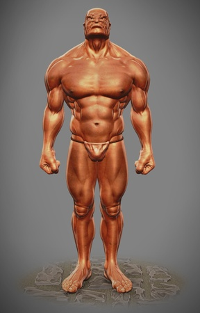 muscle man figure front view  photo