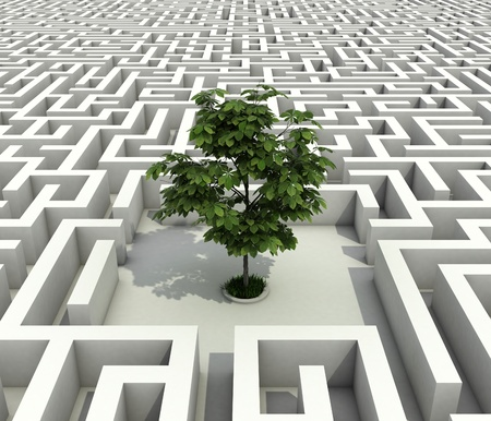 single tree lost in endless labyrinth -ecology 3d concept Stock Photo - 12331684