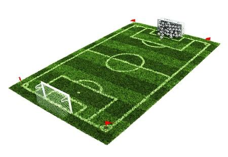 looser: goal full of balls on the football field