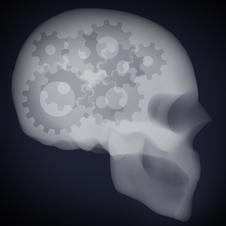 x ray of the gears in human head  photo