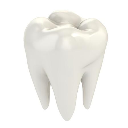 healthy teeth: diente aislado 3d ilustraci�n