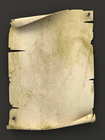 medieval scroll: old blank manuscript as background