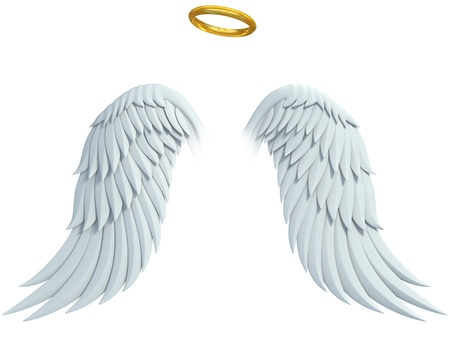 angel white: angel design elements - wings and golden halo isolated on the white background