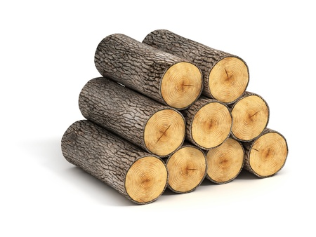 stack of firewood logs on white background Stockfoto