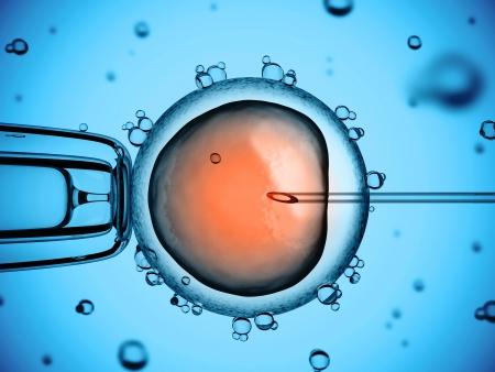 genetica: inseminazione artificiale Archivio Fotografico
