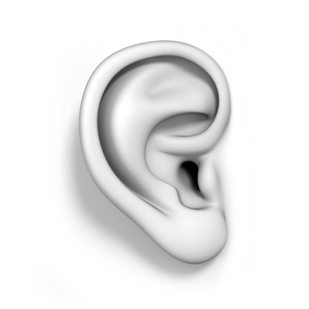 human ear: human ear isolated Stock Photo