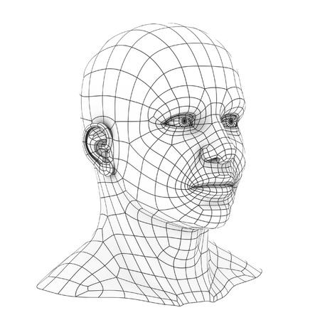 inteligencia: cabeza humana 3d wireframe Foto de archivo