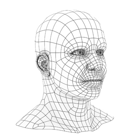 artificial model: human head 3d wireframe
