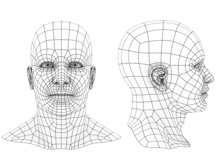 side by side: human head 3d wireframe front and side view