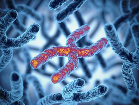 strand: chromosomes 3d illustration