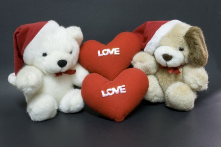 White teddy bear for  love with you. photo